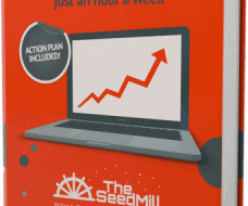 The SeedMill ebook - 5 Quick Fixes To Increase Website Traffic