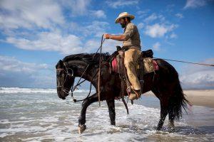 Cowboy coder on horse